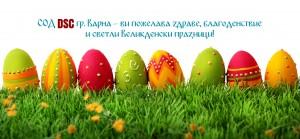 1556303987428 СОД DSC - Варна